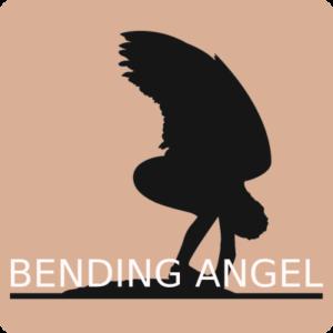 Bending Angel Bookshop